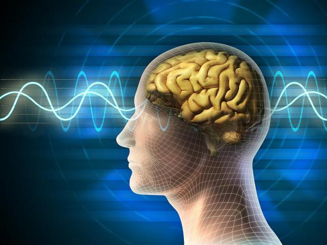resonansi-bigstock_brain_waves_10453853