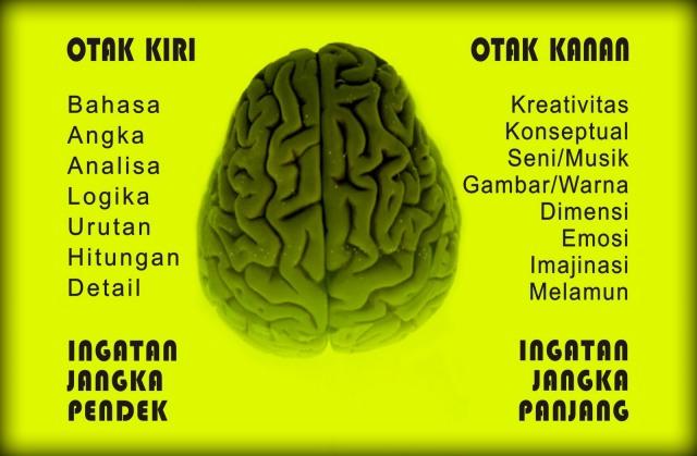 otak 3